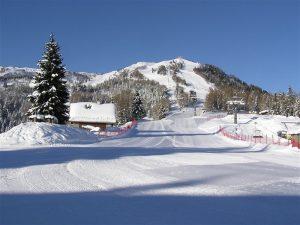 5.Friuli